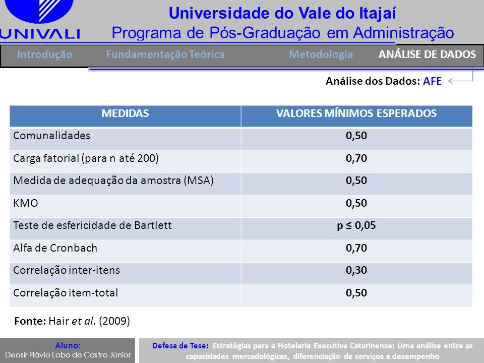 Universidade do Vale do Itajaí Programa de Pós-Graduação em Administração IntroduçãoFundamentação Teórica Análise dos Dados: AFE Aluno: Deosir Flávio