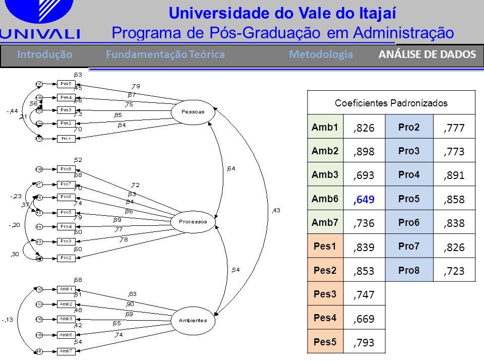 Universidade do Vale do Itajaí Programa de Pós-Graduação em Administração IntroduçãoFundamentação TeóricaANÁLISE DE DADOSMetodologia Coeficientes Padr