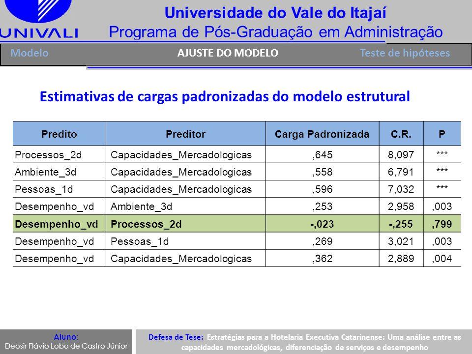 Universidade do Vale do Itajaí Programa de Pós-Graduação em Administração Aluno: Deosir Flávio Lobo de Castro Júnior Estimativas de cargas padronizada
