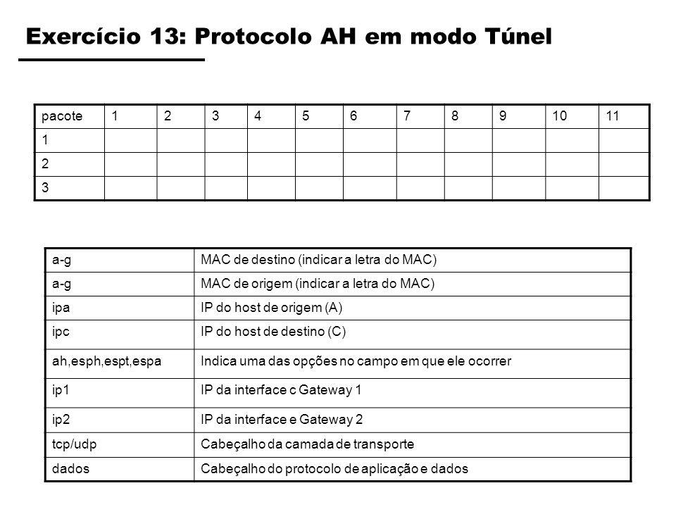 Exercício 13: Protocolo AH em modo Túnel pacote1234567891011 1 2 3 a-gMAC de destino (indicar a letra do MAC) a-gMAC de origem (indicar a letra do MAC