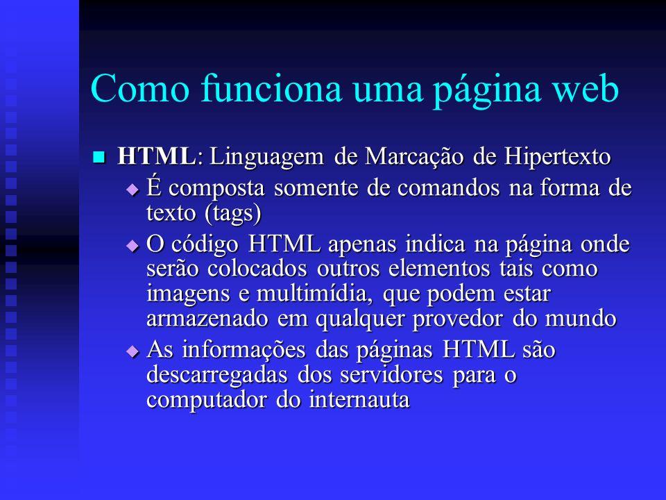 Como funciona uma página web HTML: Linguagem de Marcação de Hipertexto HTML: Linguagem de Marcação de Hipertexto É composta somente de comandos na forma de texto (tags) É composta somente de comandos na forma de texto (tags) O código HTML apenas indica na página onde serão colocados outros elementos tais como imagens e multimídia, que podem estar armazenado em qualquer provedor do mundo O código HTML apenas indica na página onde serão colocados outros elementos tais como imagens e multimídia, que podem estar armazenado em qualquer provedor do mundo As informações das páginas HTML são descarregadas dos servidores para o computador do internauta As informações das páginas HTML são descarregadas dos servidores para o computador do internauta