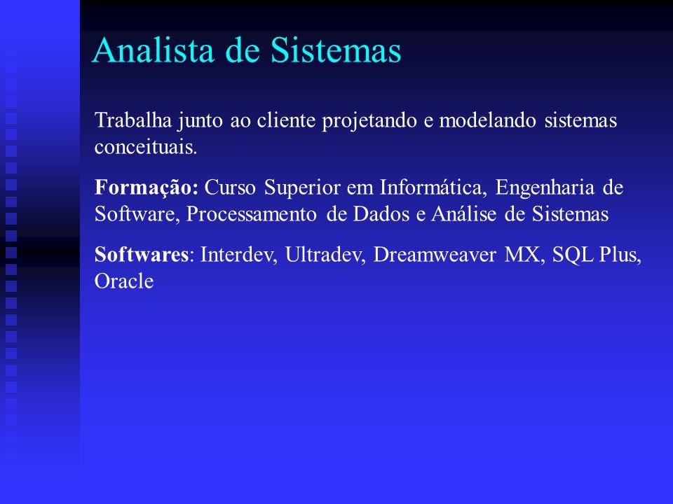 Analista de Sistemas Trabalha junto ao cliente projetando e modelando sistemas conceituais.