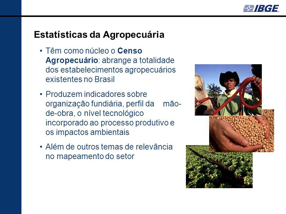 Estatísticas da Agropecuária Têm como núcleo o Censo Agropecuário: abrange a totalidade dos estabelecimentos agropecuários existentes no Brasil Produz