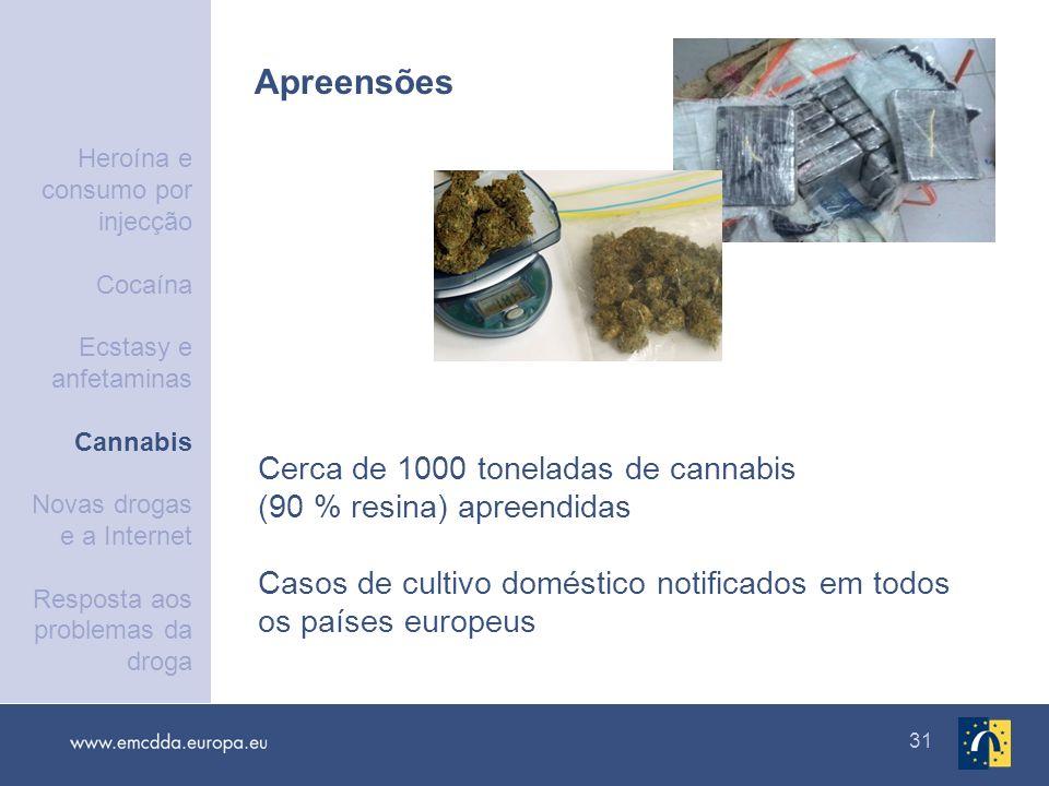 31 Apreensões Cerca de 1000 toneladas de cannabis (90 % resina) apreendidas Casos de cultivo doméstico notificados em todos os países europeus Heroína