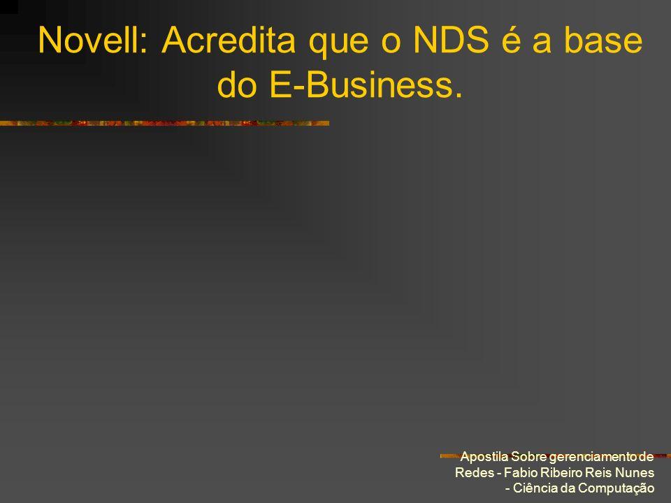 Apostila Sobre gerenciamento de Redes - Fabio Ribeiro Reis Nunes - Ciência da Computação Novell: Acredita que o NDS é a base do E-Business.