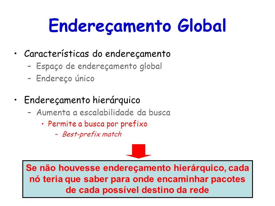 Tópicos Especiais em Roteamento na Internet – TET/UFF Professor Miguel Campista Endereçamento Global Características do endereçamento –Espaço de ender