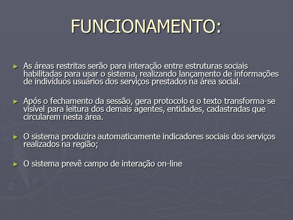 FUNCIONAMENTO: As áreas restritas serão para interação entre estruturas sociais habilitadas para usar o sistema, realizando lançamento de informações