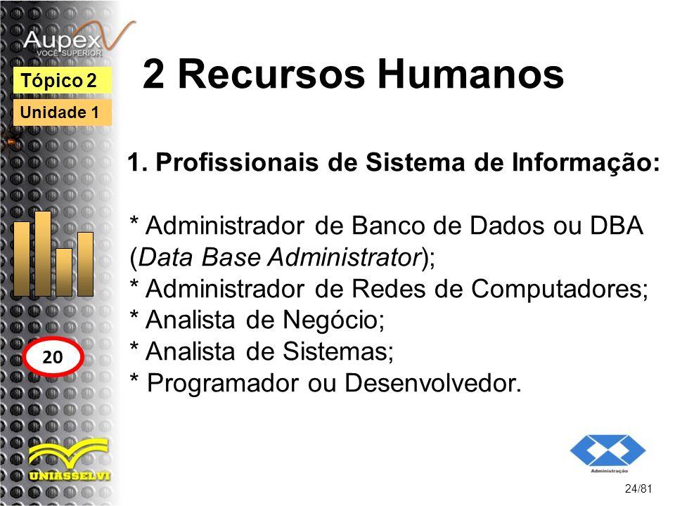 2 Recursos Humanos 1. Profissionais de Sistema de Informação: * Administrador de Banco de Dados ou DBA (Data Base Administrator); * Administrador de R