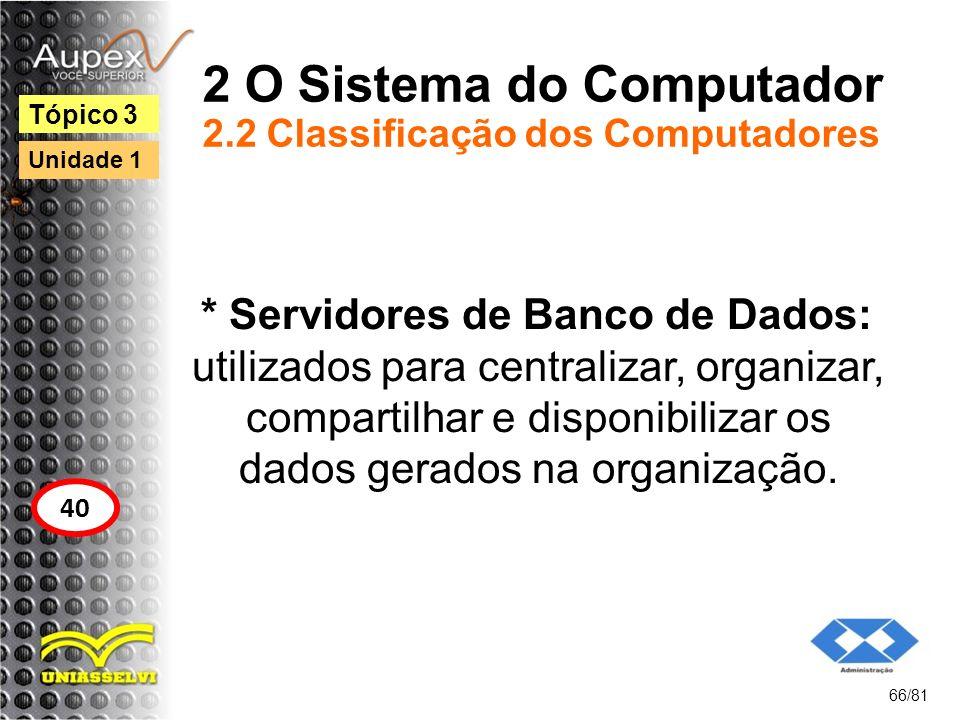2 O Sistema do Computador 2.2 Classificação dos Computadores * Servidores de Banco de Dados: utilizados para centralizar, organizar, compartilhar e di