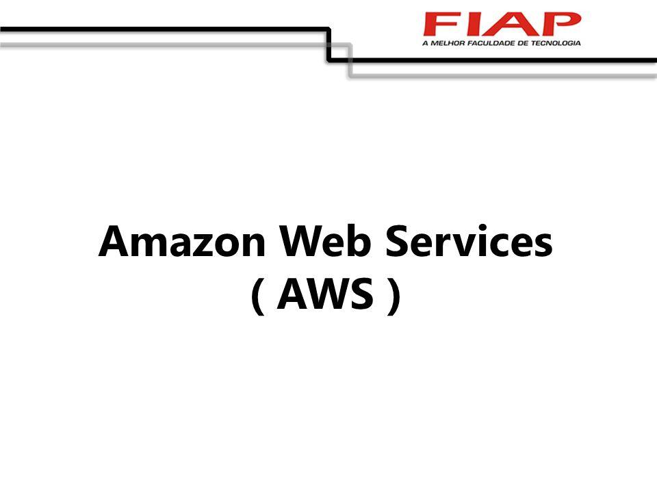 Amazon Web Services ( AWS )