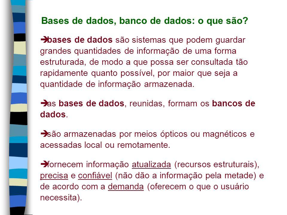 bases de dados referenciais: remetem às fontes primárias.