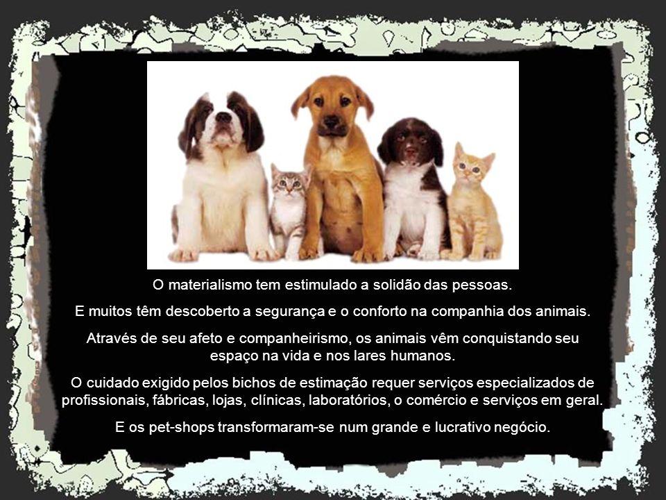 Criado por rildosilveira@yahoo.com.br Cruzília – MG – Brasil Émile Zola Por que é que o sofrimento dos animais me comove tanto? Porque fazem parte da