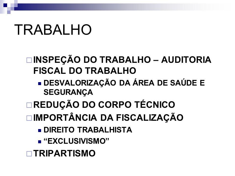 TRABALHO INSPEÇÃO DO TRABALHO – AUDITORIA FISCAL DO TRABALHO DESVALORIZAÇÃO DA ÁREA DE SAÚDE E SEGURANÇA REDUÇÃO DO CORPO TÉCNICO IMPORTÂNCIA DA FISCA