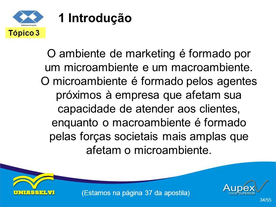 1 Introdução O ambiente de marketing é formado por um microambiente e um macroambiente. O microambiente é formado pelos agentes próximos à empresa que