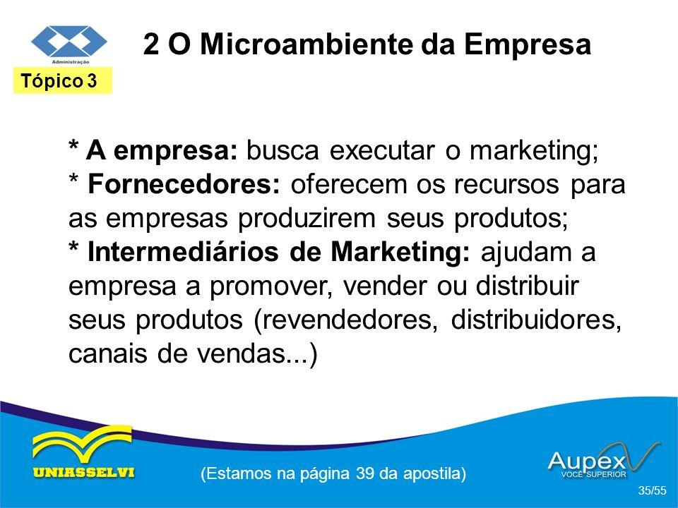 2 O Microambiente da Empresa * A empresa: busca executar o marketing; * Fornecedores: oferecem os recursos para as empresas produzirem seus produtos;