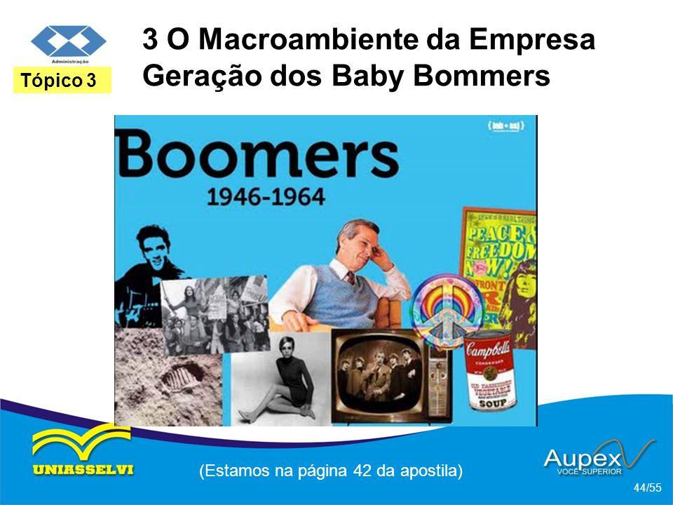 3 O Macroambiente da Empresa Geração dos Baby Bommers (Estamos na página 42 da apostila) 44/55 Tópico 3