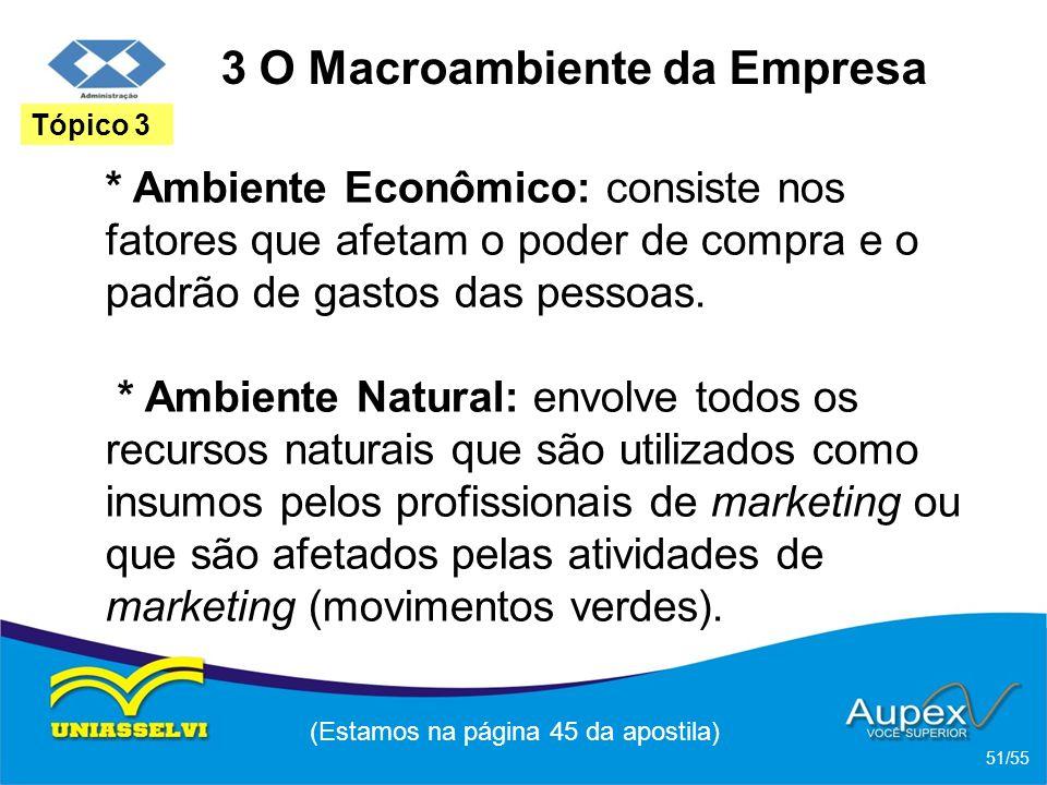 3 O Macroambiente da Empresa * Ambiente Econômico: consiste nos fatores que afetam o poder de compra e o padrão de gastos das pessoas. * Ambiente Natu