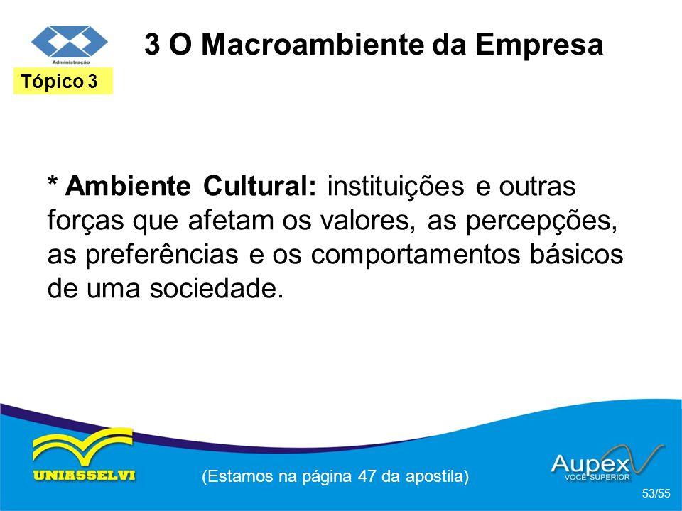 3 O Macroambiente da Empresa * Ambiente Cultural: instituições e outras forças que afetam os valores, as percepções, as preferências e os comportament