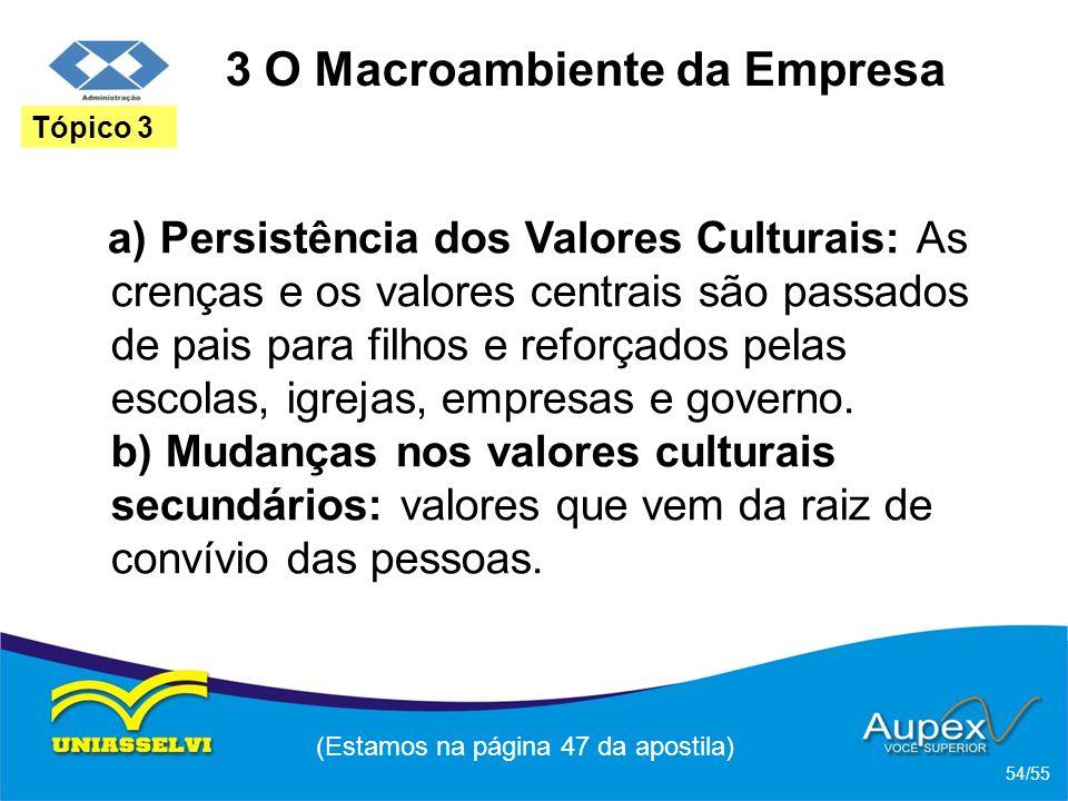 3 O Macroambiente da Empresa a) Persistência dos Valores Culturais: As crenças e os valores centrais são passados de pais para filhos e reforçados pel