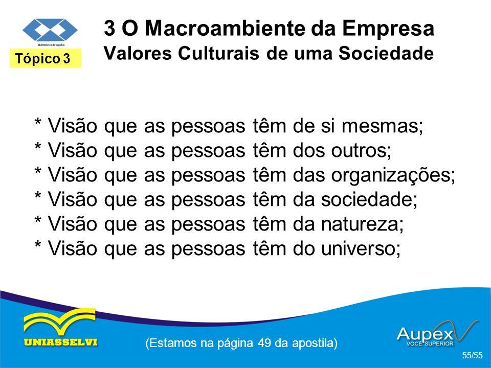 3 O Macroambiente da Empresa Valores Culturais de uma Sociedade * Visão que as pessoas têm de si mesmas; * Visão que as pessoas têm dos outros; * Visã