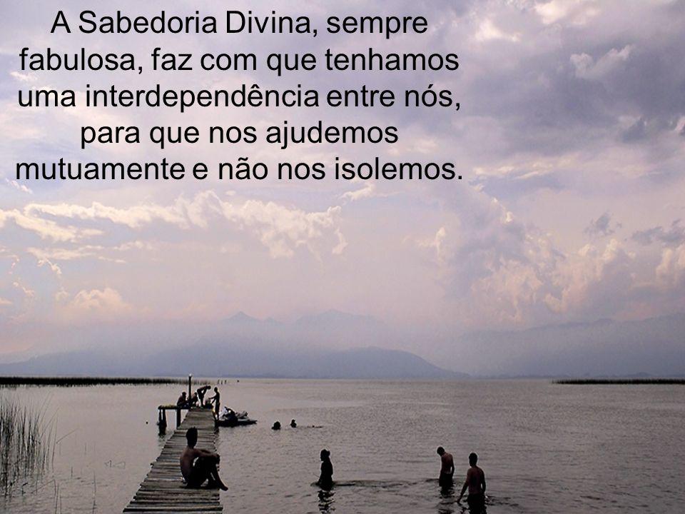 A Sabedoria Divina, sempre fabulosa, faz com que tenhamos uma interdependência entre nós, para que nos ajudemos mutuamente e não nos isolemos.