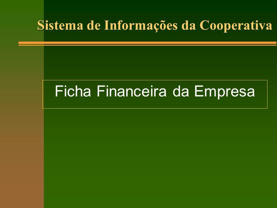 Sistema de Informações da Cooperativa Ficha Financeira da Empresa