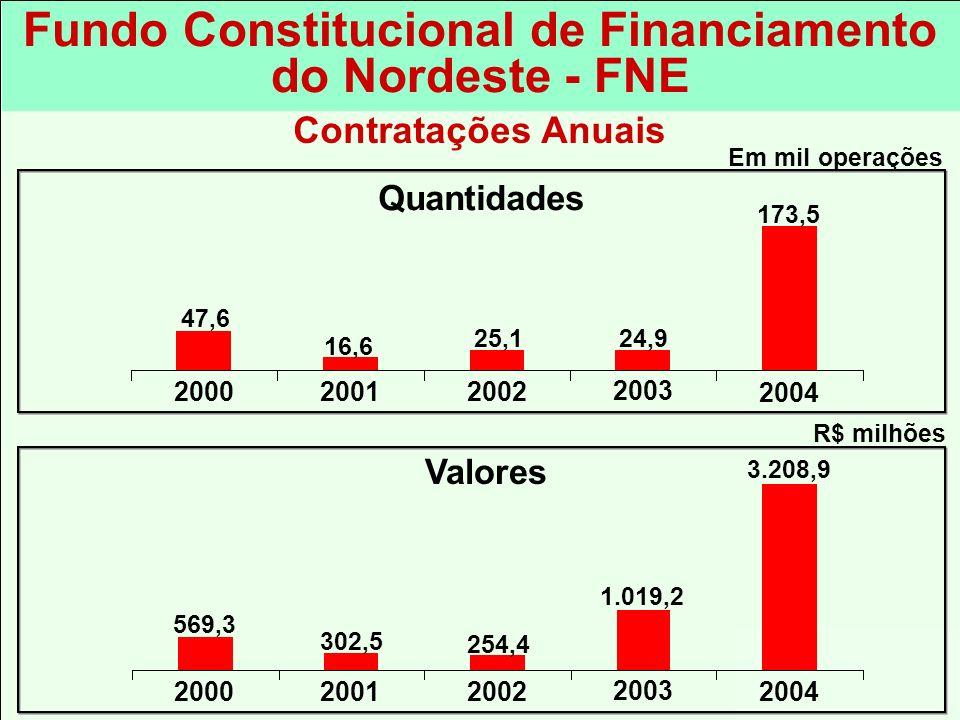 254,4 3.208,9 R$ milhões 2002 2003 2004 1.019,2 20012000 302,5 569,3 Fundo Constitucional de Financiamento do Nordeste - FNE Valores Quantidades 25,1