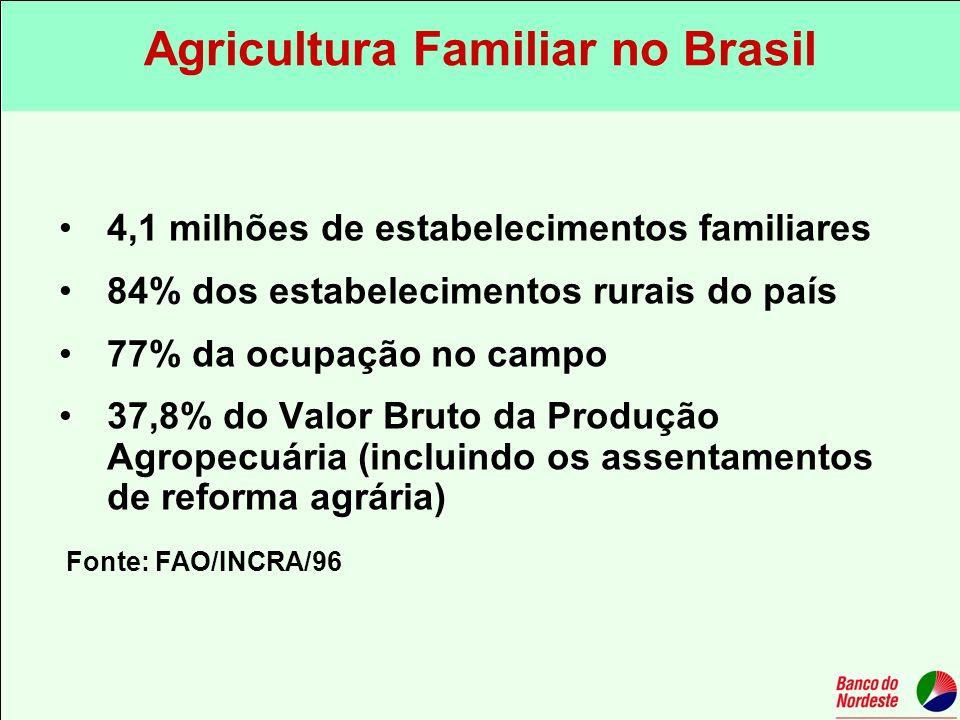 4,1 milhões de estabelecimentos familiares 84% dos estabelecimentos rurais do país 77% da ocupação no campo 37,8% do Valor Bruto da Produção Agropecuá