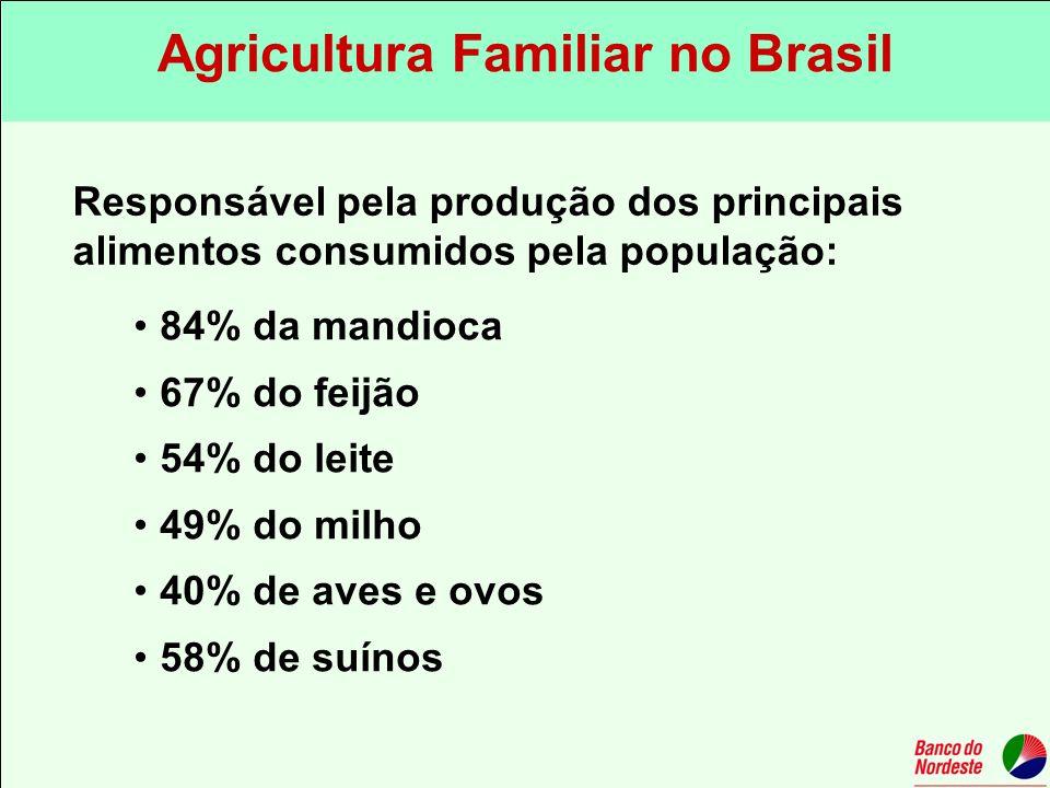 84% da mandioca 67% do feijão 54% do leite 49% do milho 40% de aves e ovos 58% de suínos Responsável pela produção dos principais alimentos consumidos