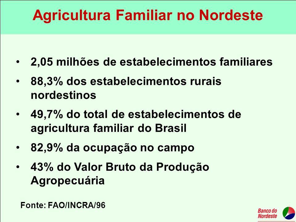 2,05 milhões de estabelecimentos familiares 88,3% dos estabelecimentos rurais nordestinos 49,7% do total de estabelecimentos de agricultura familiar d