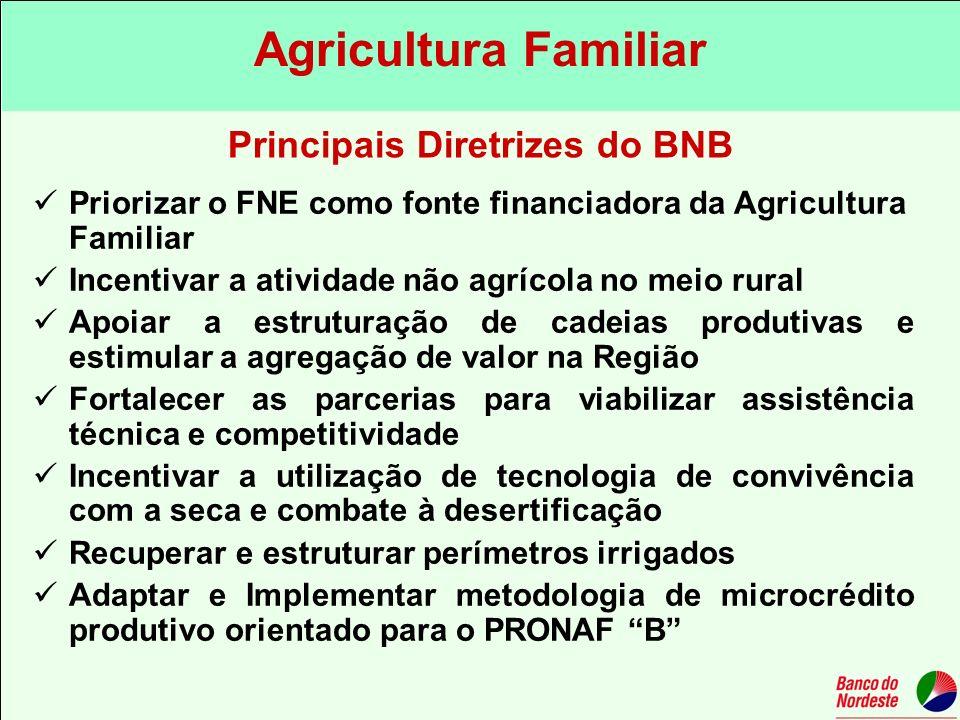Priorizar o FNE como fonte financiadora da Agricultura Familiar Incentivar a atividade não agrícola no meio rural Apoiar a estruturação de cadeias pro