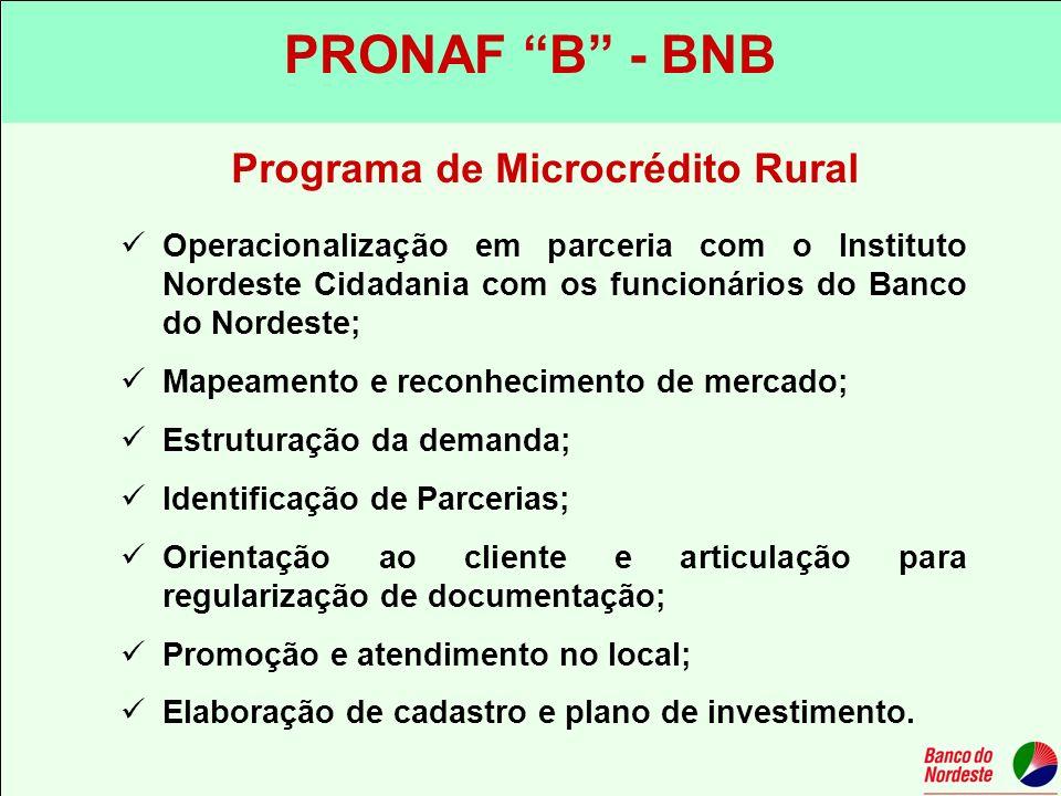 Programa de Microcrédito Rural Operacionalização em parceria com o Instituto Nordeste Cidadania com os funcionários do Banco do Nordeste; Mapeamento e