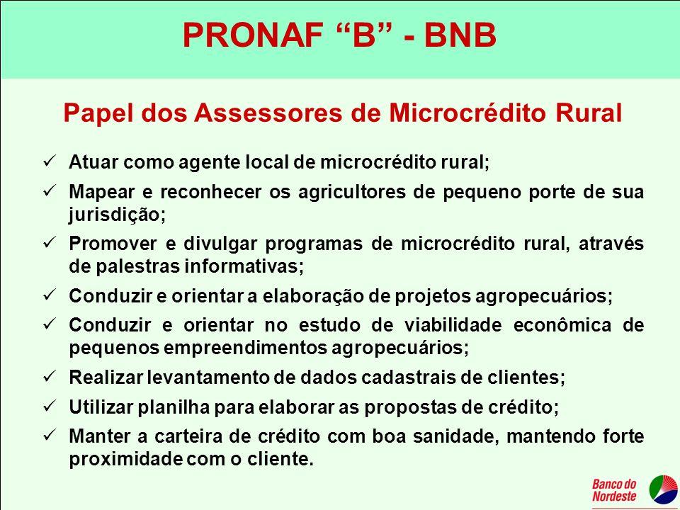 Papel dos Assessores de Microcrédito Rural Atuar como agente local de microcrédito rural; Mapear e reconhecer os agricultores de pequeno porte de sua