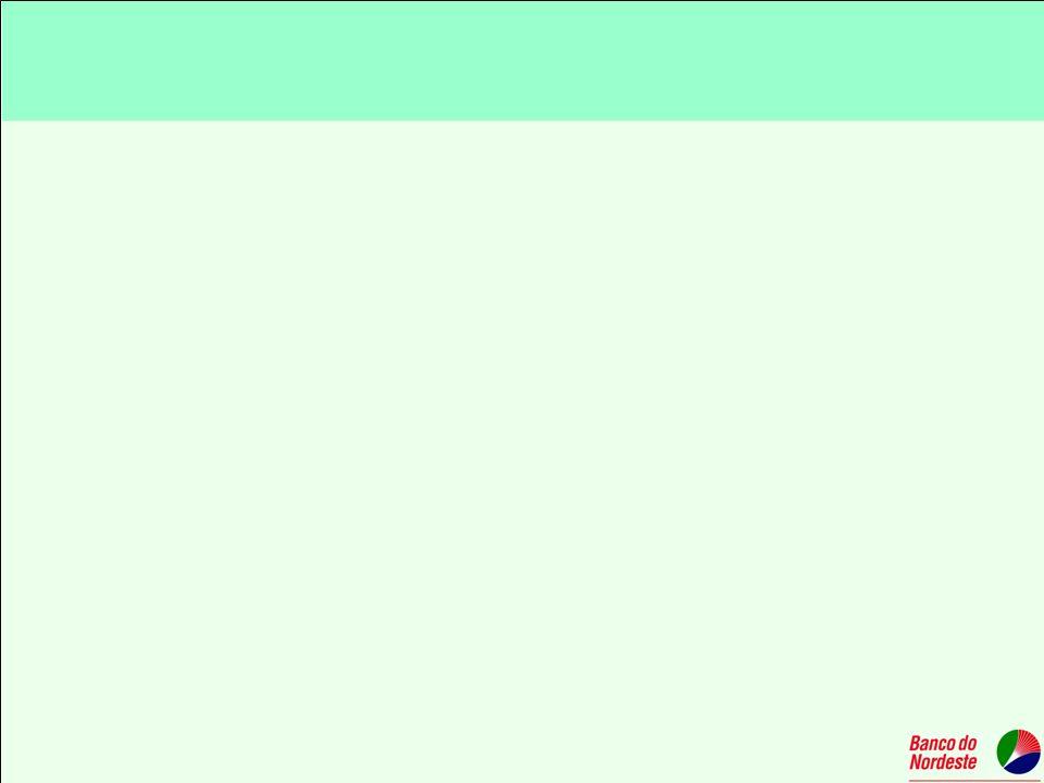 Programa de Microcrédito Rural Operacionalização em parceria com o Instituto Nordeste Cidadania com os funcionários do Banco do Nordeste; Mapeamento e reconhecimento de mercado; Estruturação da demanda; Identificação de Parcerias; Orientação ao cliente e articulação para regularização de documentação; Promoção e atendimento no local; Elaboração de cadastro e plano de investimento.
