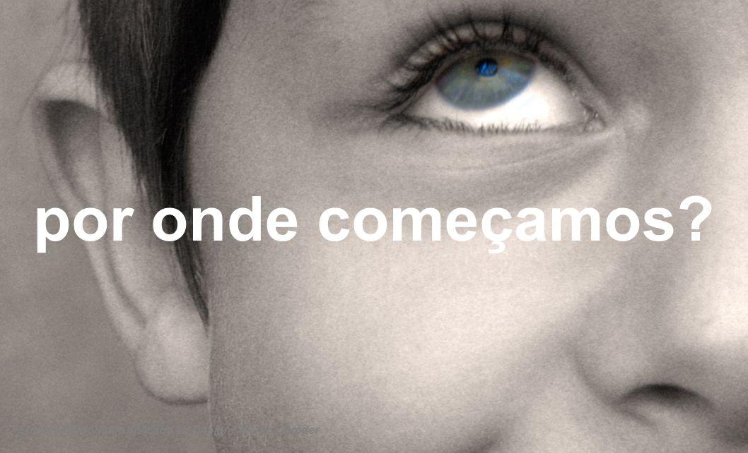 OBSERVAR LARICA[i], 2006 [i] Formigueiros virtuais.