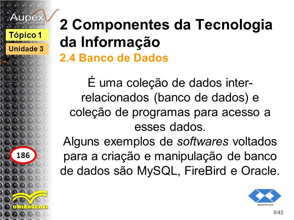 2 Componentes da Tecnologia da Informação 2.4 Banco de Dados É uma coleção de dados inter- relacionados (banco de dados) e coleção de programas para a