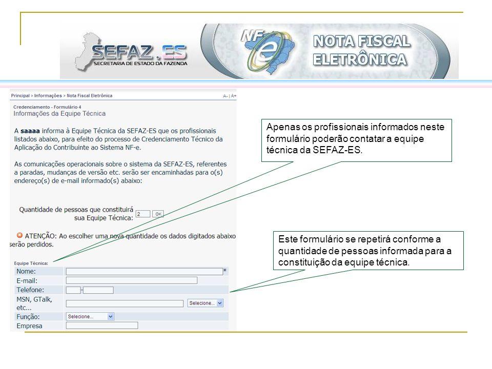 Apenas os profissionais informados neste formulário poderão contatar a equipe técnica da SEFAZ-ES. Este formulário se repetirá conforme a quantidade d