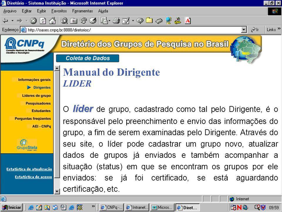 Manual do Dirigente LIDER líder O líder de grupo, cadastrado como tal pelo Dirigente, é o responsável pelo preenchimento e envio das informações do gr