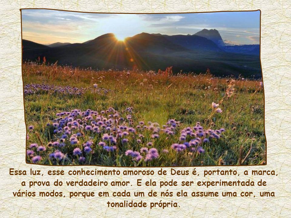 E é por causa desse amor que uma luz abre caminho em nós, a luz de Jesus, segundo a sua promessa: Quem me ama... me manifestarei a ele. O amor é fonte