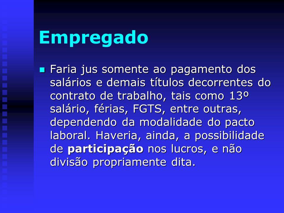 Empregado Faria jus somente ao pagamento dos salários e demais títulos decorrentes do contrato de trabalho, tais como 13º salário, férias, FGTS, entre