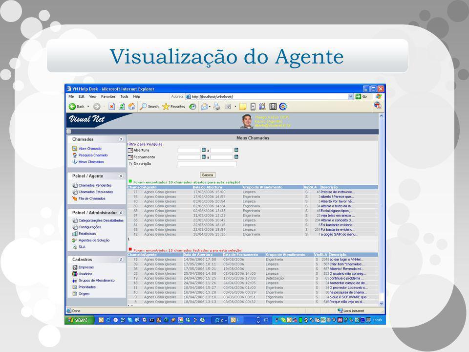 Visualização do Agente