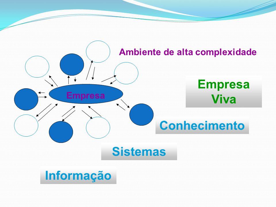 Informação Sistemas Conhecimento Empresa Viva Empresa Ambiente de alta complexidade