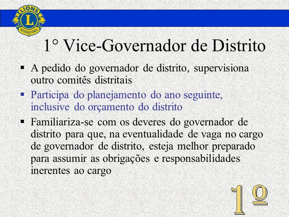 1° Vice-Governador de Distrito A pedido do governador de distrito, supervisiona outro comitês distritais Participa do planejamento do ano seguinte, in