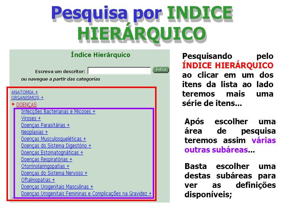 Pesquisa por INDICE HIERÁRQUICO Pesquisando pelo ÍNDICE HIERÁRQUICO ao clicar em um dos itens da lista ao lado teremos mais uma série de itens... Após