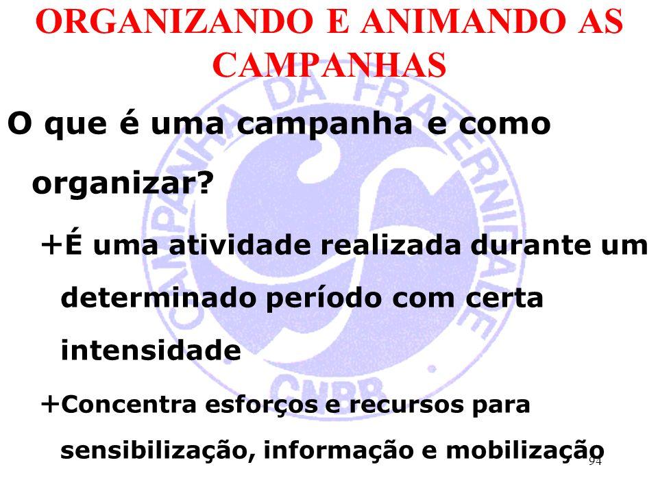 ORGANIZANDO E ANIMANDO AS CAMPANHAS O que é uma campanha e como organizar.