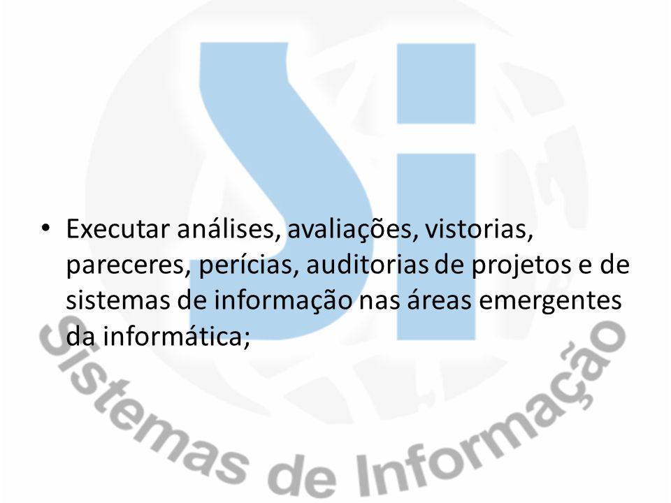 Executar análises, avaliações, vistorias, pareceres, perícias, auditorias de projetos e de sistemas de informação nas áreas emergentes da informática;