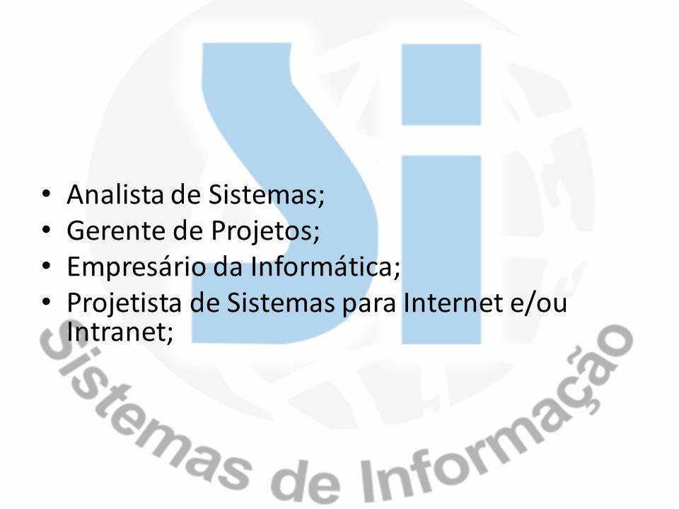 Analista de Sistemas; Gerente de Projetos; Empresário da Informática; Projetista de Sistemas para Internet e/ou Intranet;