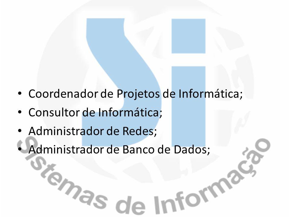 Coordenador de Projetos de Informática; Consultor de Informática; Administrador de Redes; Administrador de Banco de Dados;