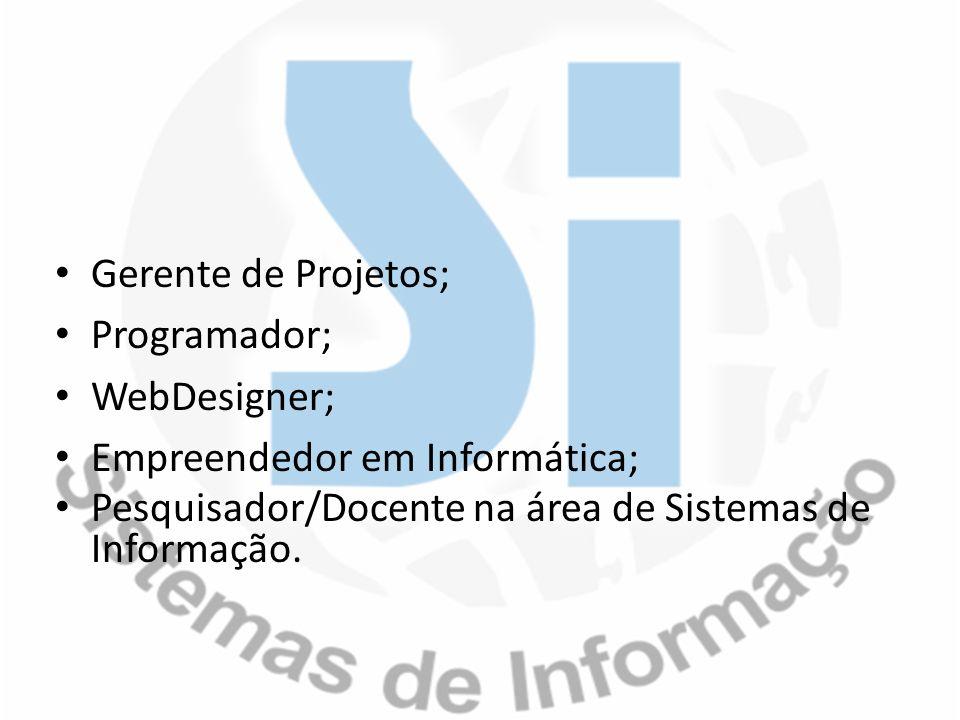 Gerente de Projetos; Programador; WebDesigner; Empreendedor em Informática; Pesquisador/Docente na área de Sistemas de Informação.