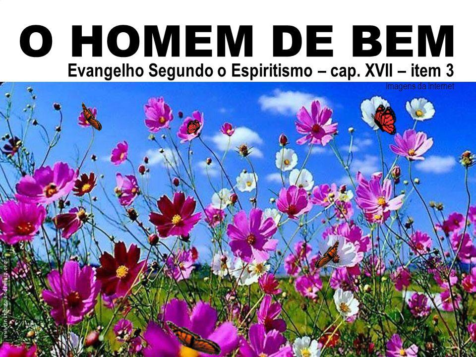 O HOMEM DE BEM Evangelho Segundo o Espiritismo – cap. XVII – item 3 Imagens da Internet